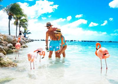 Destacados_Aruba